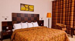Ayass Hotel فندق اياس