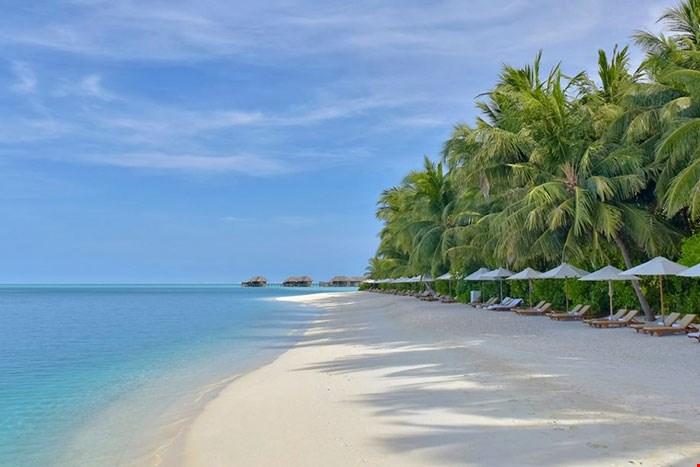 馬爾代夫倫格里島康萊德酒店 (Conrad Maldives) 27