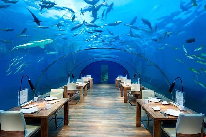 馬爾代夫倫格里島康萊德酒店 (Conrad Maldives) 56